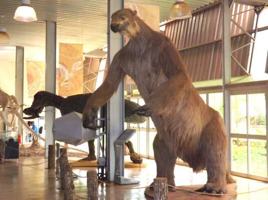 Megafauna brasileira: Preguiça-Gigante