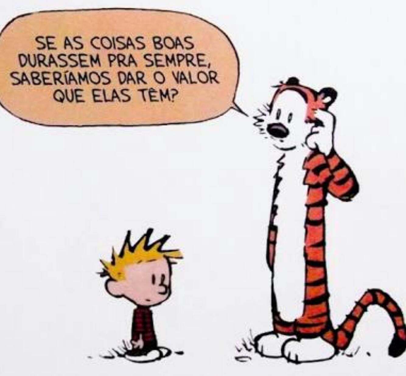 Personagens da tirinha: Calvin e Haroldo