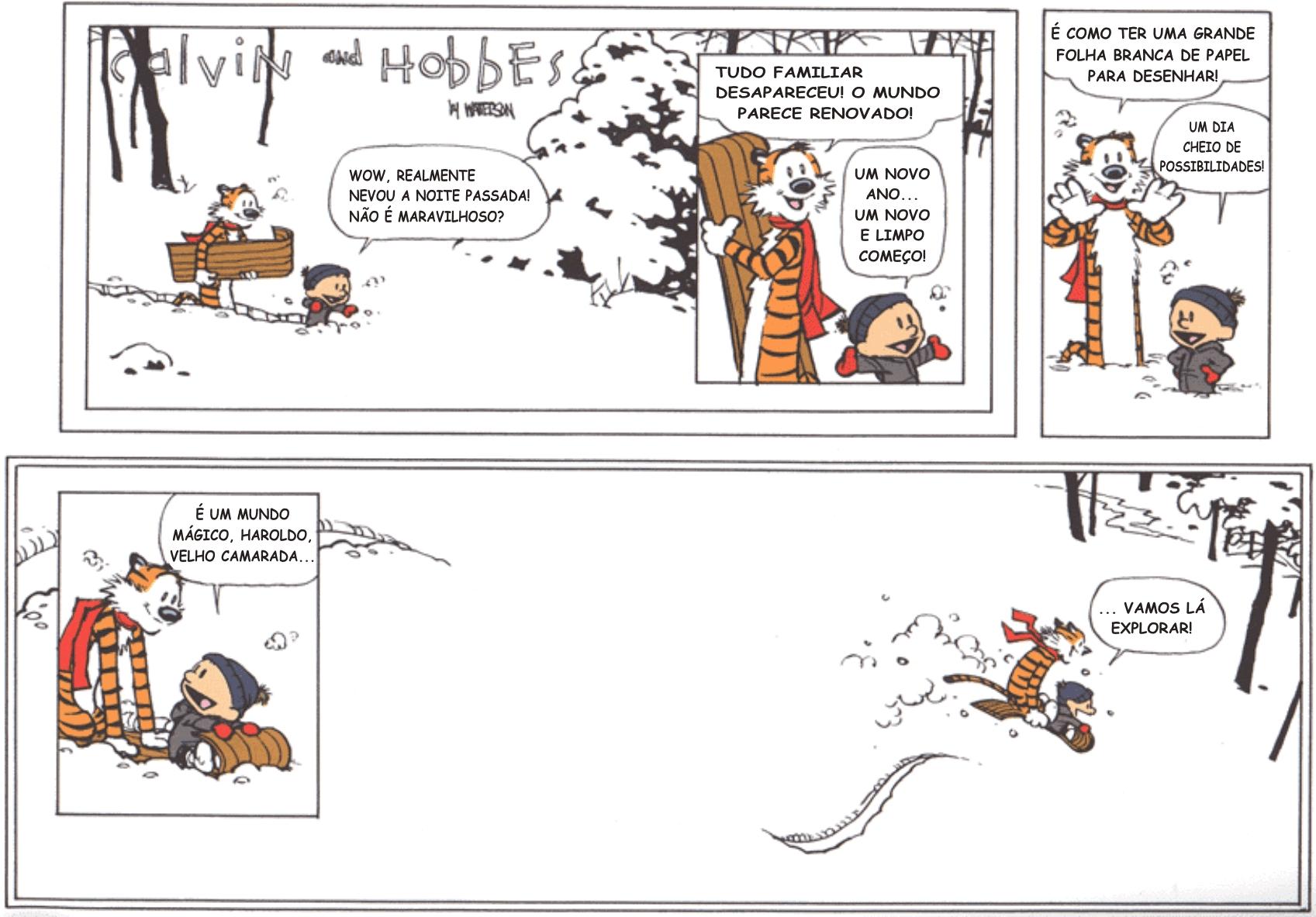 A última tirinha de Calvin e Haroldo foi publicada em 31 de dezembro de 1995