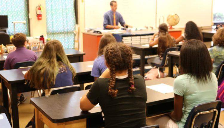 Projetos Pedagógicos Escolares Prontos - Temas, Modelos e Ideias