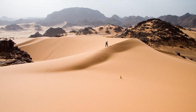 Tudo sobre o bioma Deserto do Saara