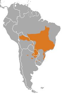 Distribuição Geográfica do Habitat do Lobo-Guará