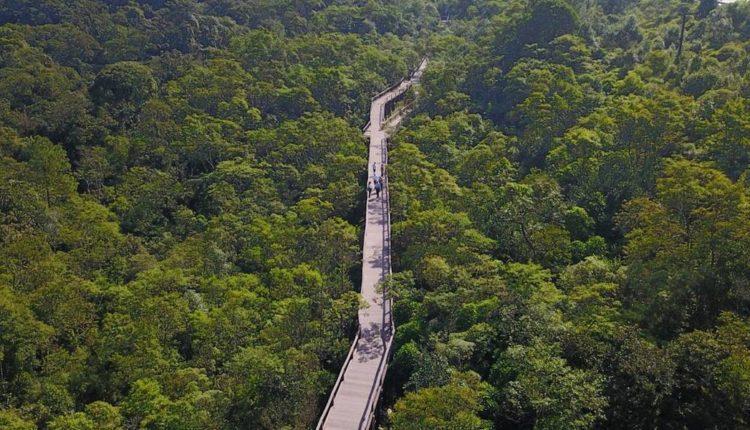 Inauguração de Novo Parque Ecológico