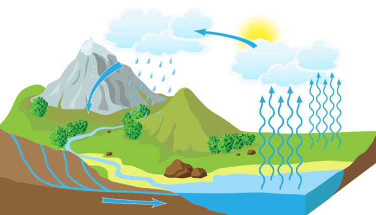 Etapas ciclo da água na natureza
