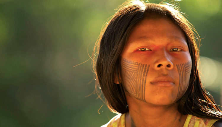 Dicionário Indígena
