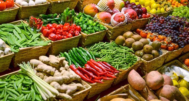 Plano De Aula Sobre Alimentos Saudaveis E Nao Saudaveis