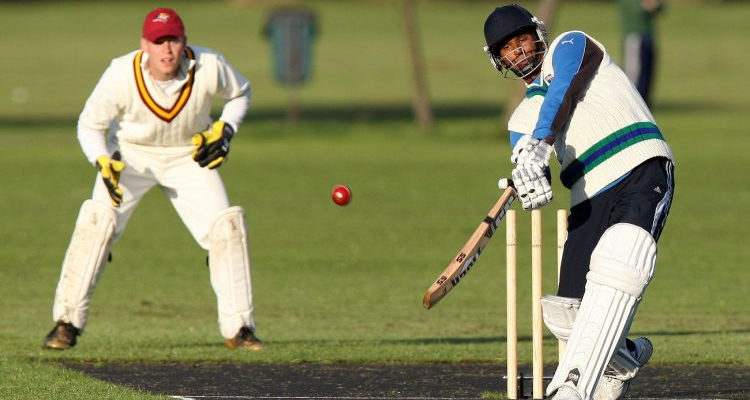 Imagem de Críquete