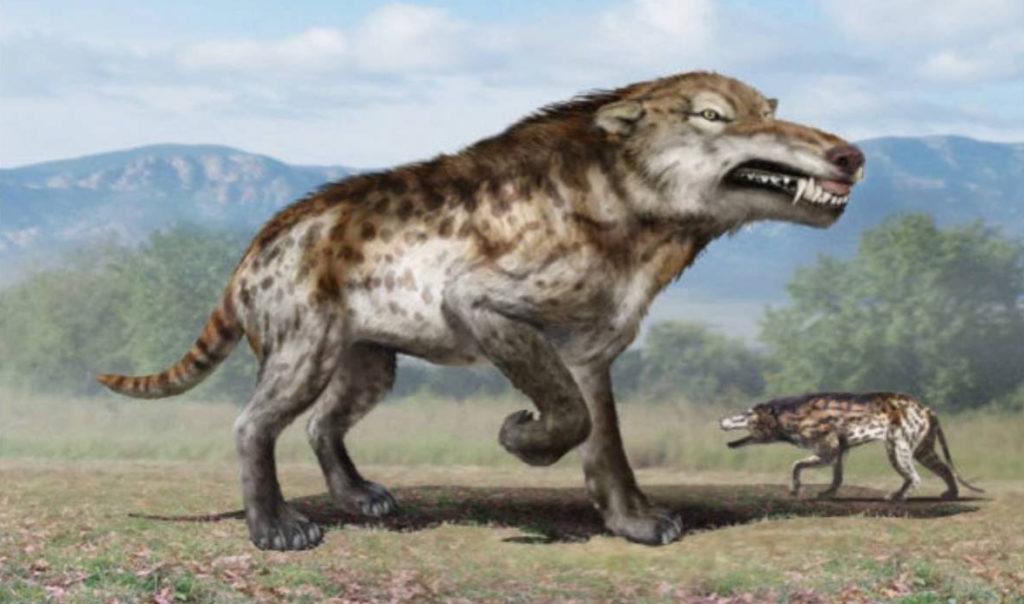Lobo-pré-histórico