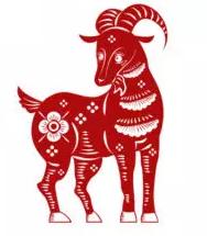 Ovelha (cabra)