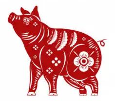 Porco (Javali)