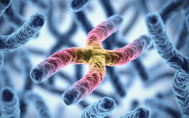 doenças causadas pelos cromossomos