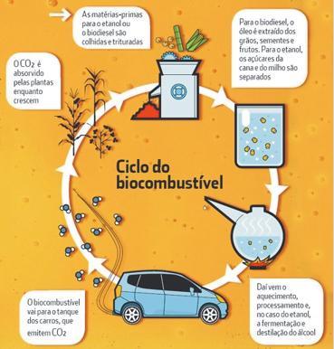 Produção de Biodiesel