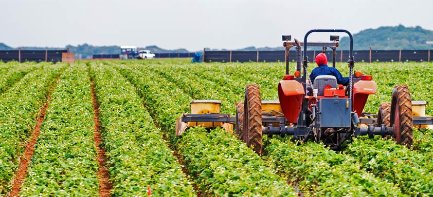 Agricultura na Região Centro-Oeste