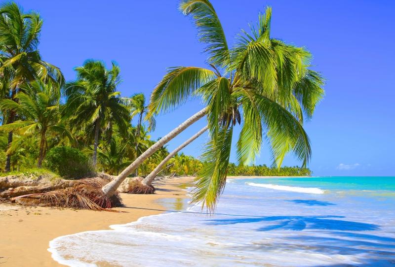 Praia do Toque, São Miguel dos Milagres (Alagoas)