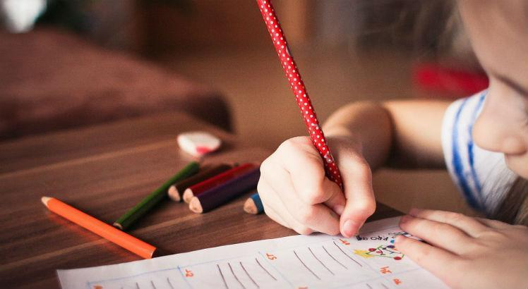 Relatório individual do aluno na alfabetização