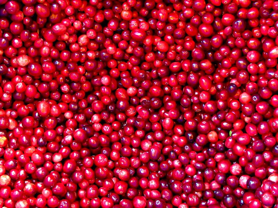 Cranberry: Oxicoco