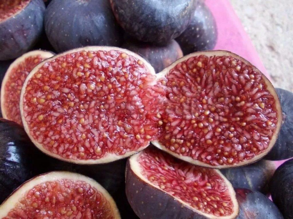 Fruta com F - Figo