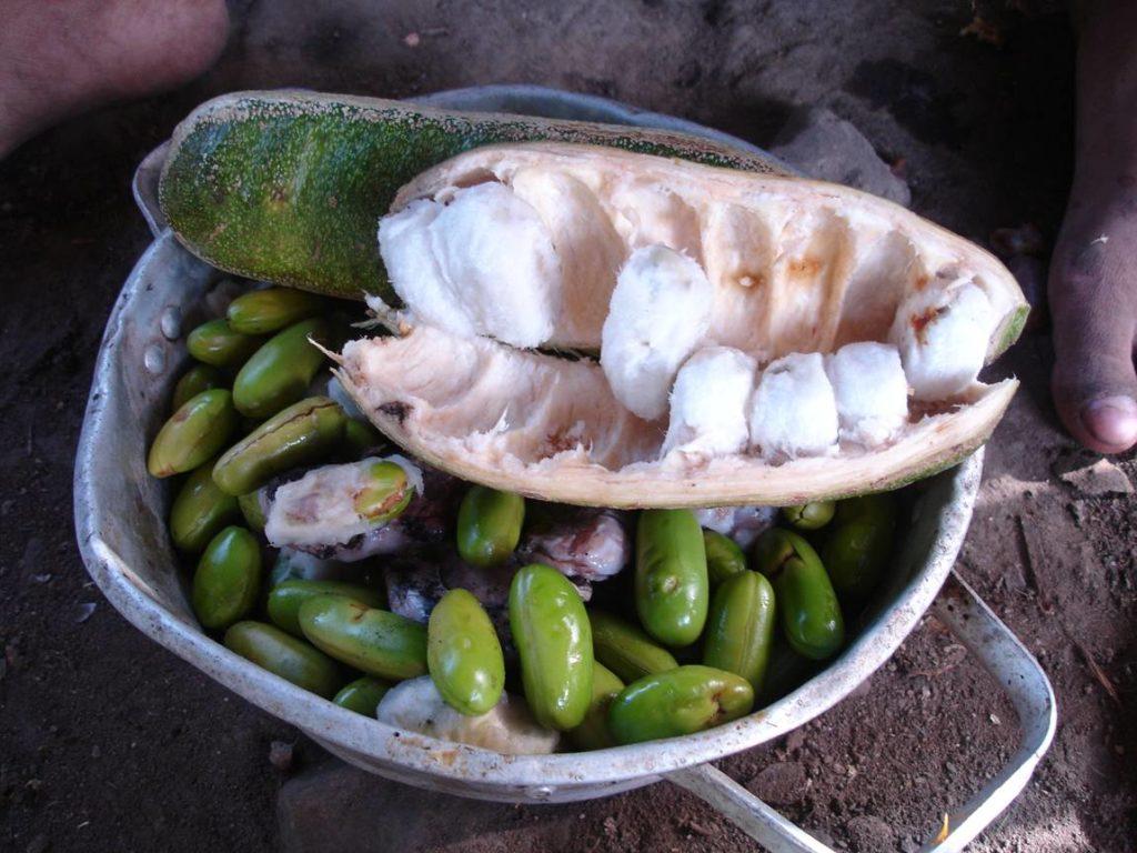 ingá-fruta