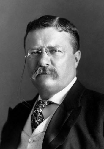 Theodore Roosevelt (1901 – 1909)