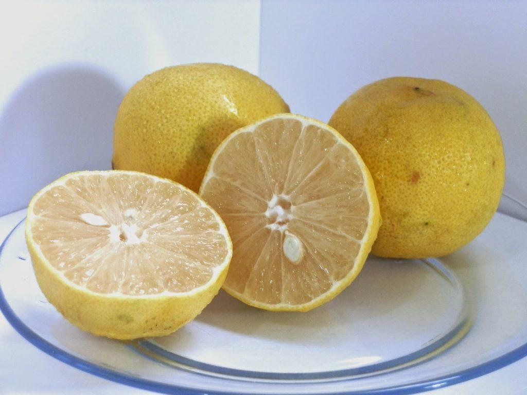 fruta-com-k-lima