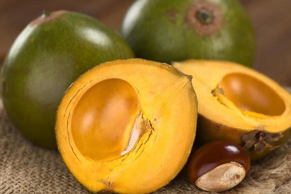 fruta-com-l-lúcuma