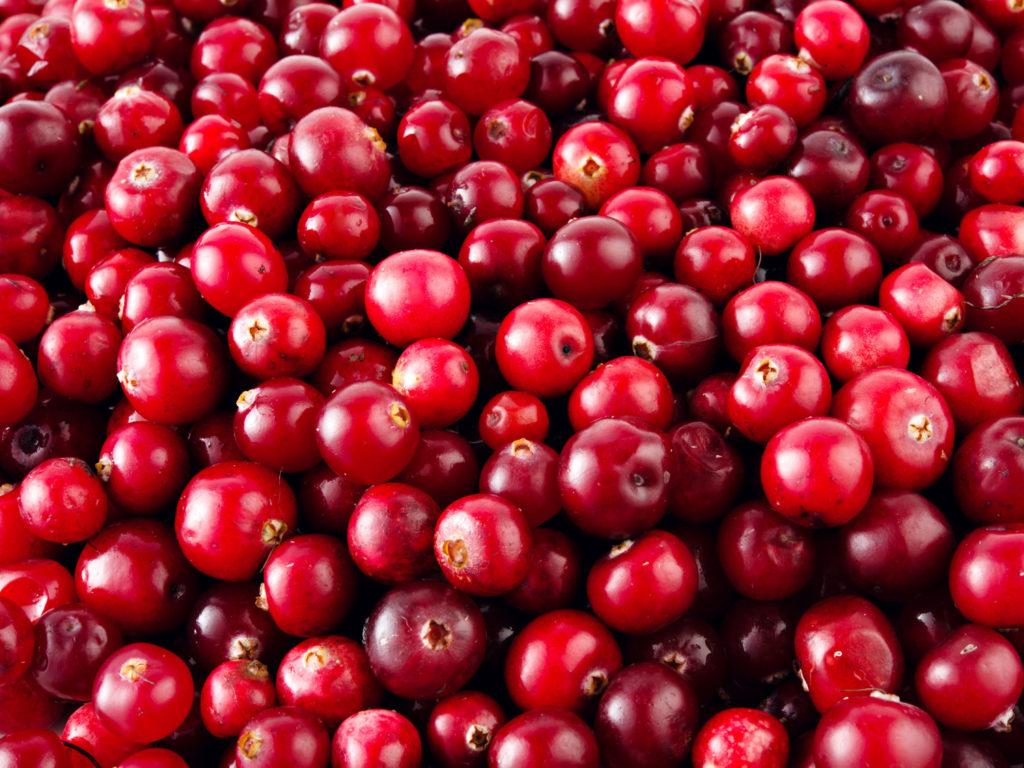 oxicoco-fruta