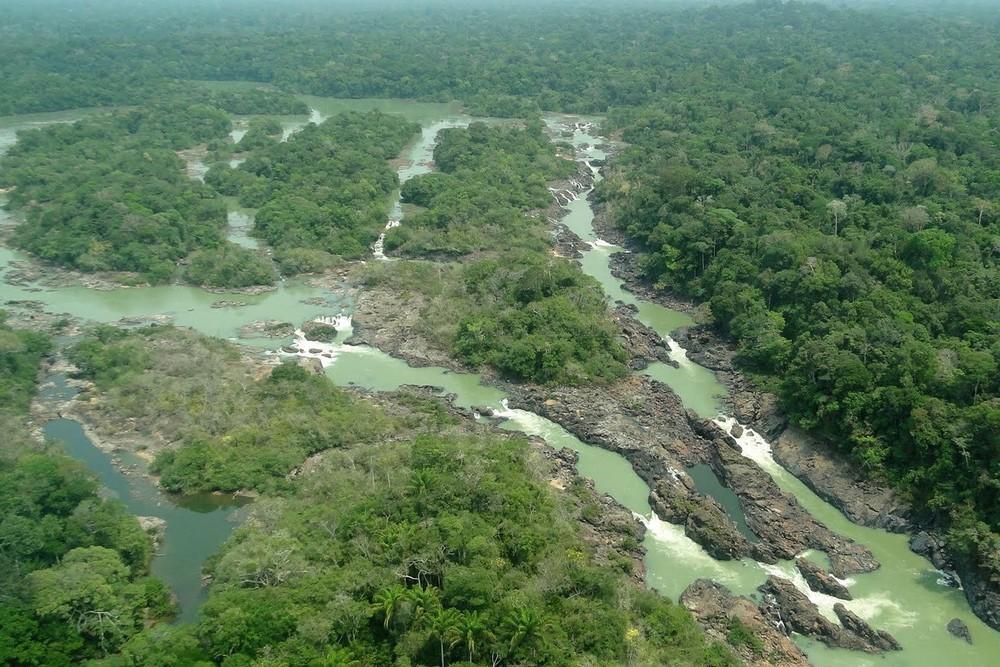Floresta nacional do jamanxim