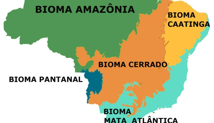 Mapa biomas do Brasil
