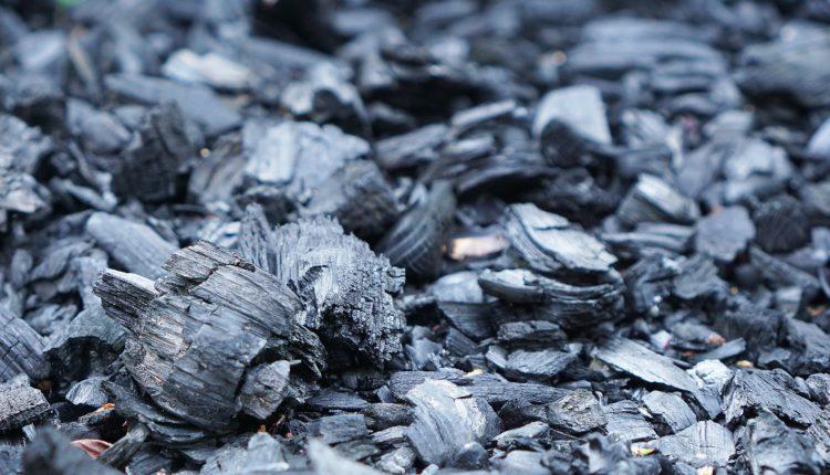 Carvão Vegetal: O que é, suas utilidades, problemas e diferença do carvão mineral