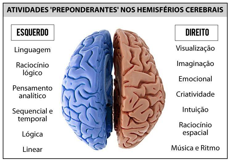 Diferenças entre os hemisférios do cérebro