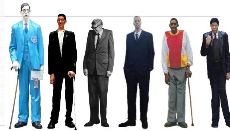 Os homens mais altos do mundo