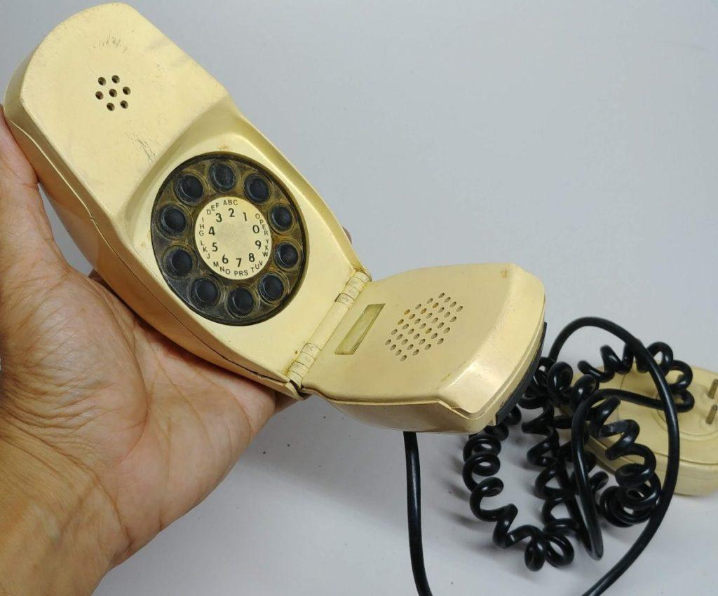 A evolução do telefone-grillo