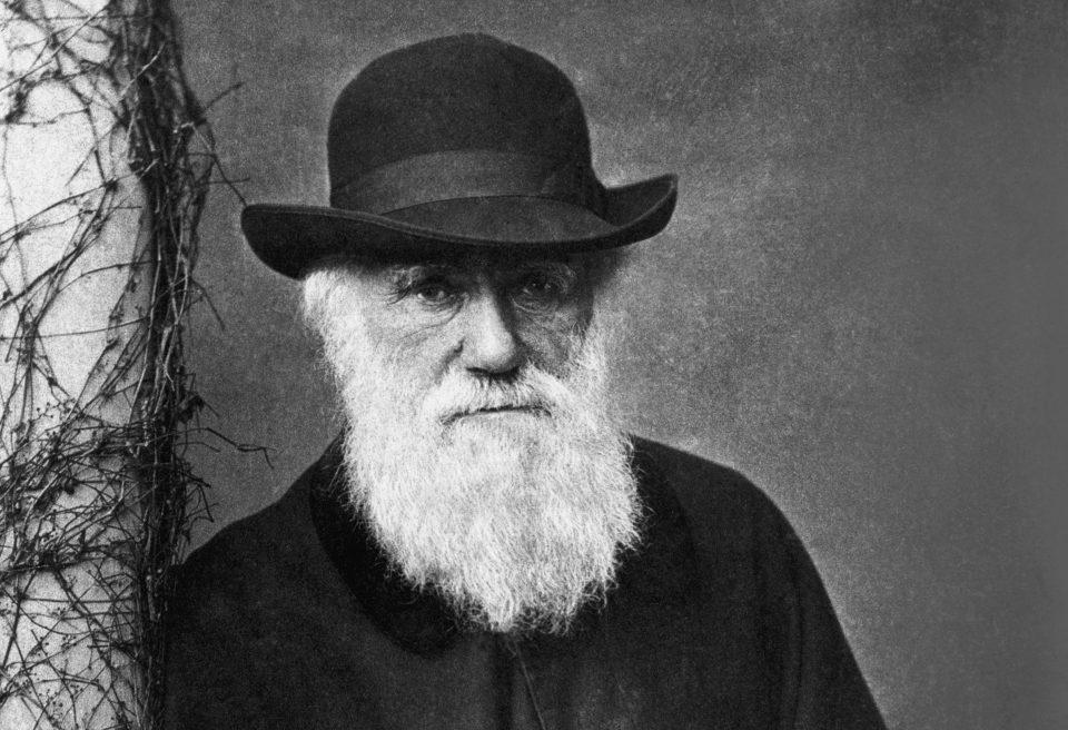 Charles Darwin - naturalista inglês que revolucionou a teoria evolutiva