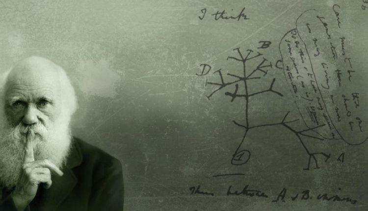 Darwin - Teoria da Evolução