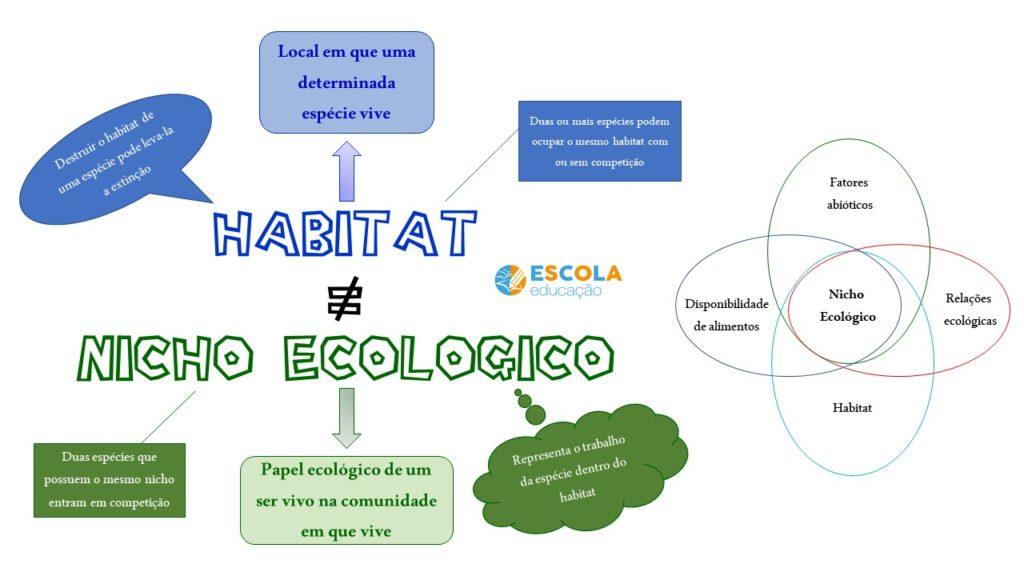 Mapa Mental - Habitat x nicho ecológico