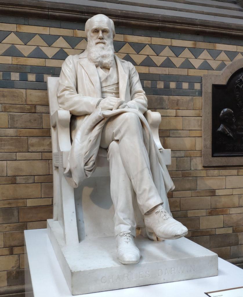 Darwinismo - Estátua realista de Charles Darwin localizada no Museu de História Natural de Londres. (Foto: Denisele Flores)
