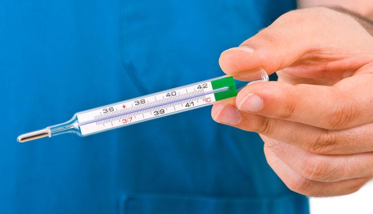 Homeotermia - Termômetro