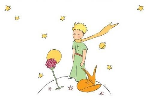 Livro O Pequeno Príncipe Frases - Escola Educação
