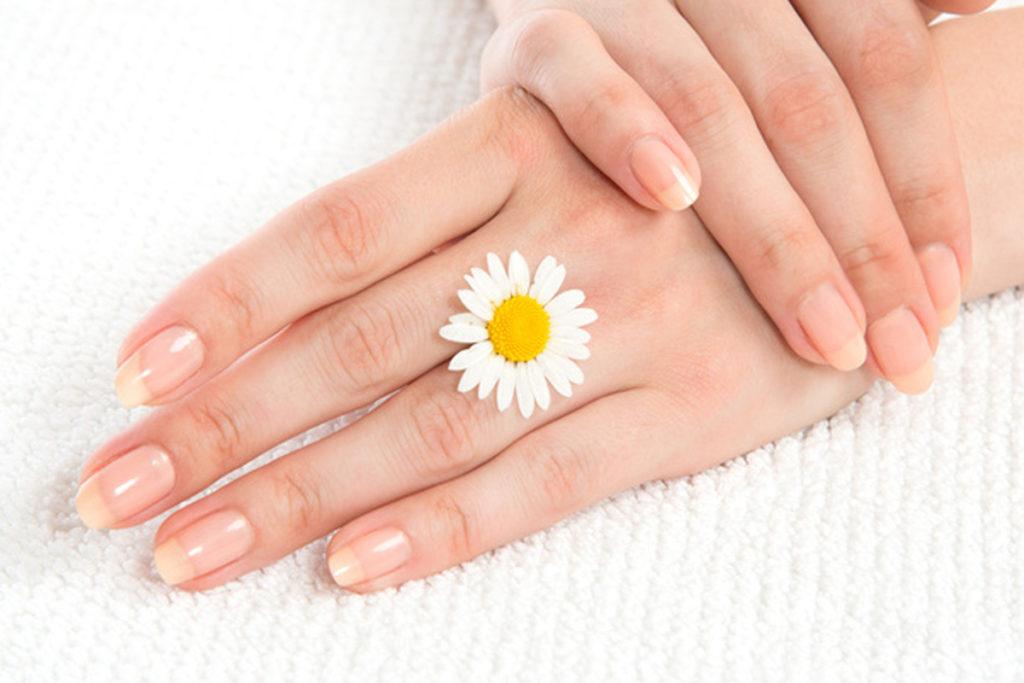 Unhas estão presentes na ponta dos dedos de vários animais, inclusive nos humanos.