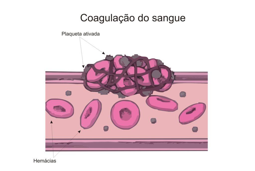 Plaquetas - Coagulação sanguínea