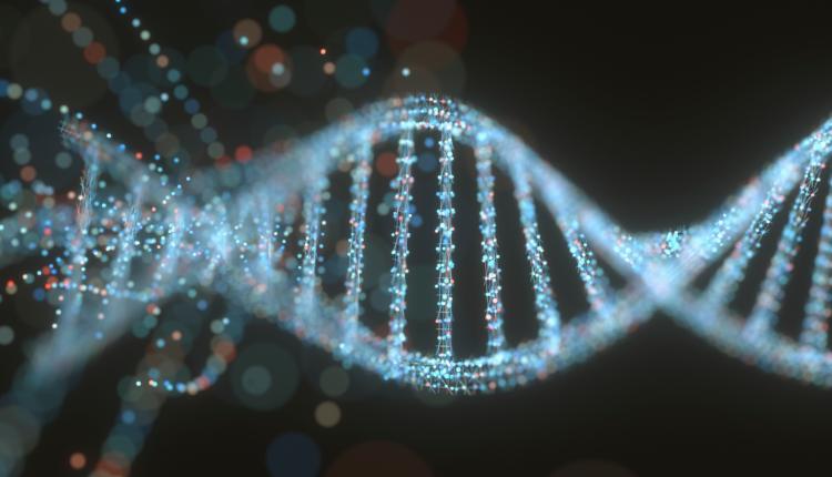 Nucleotídeo - DNA