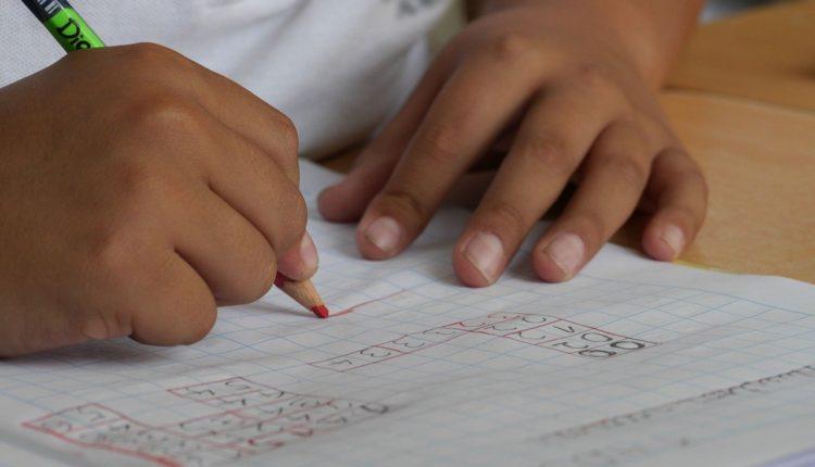 Fundação lança livros gratuitos para download de ensino fundamental