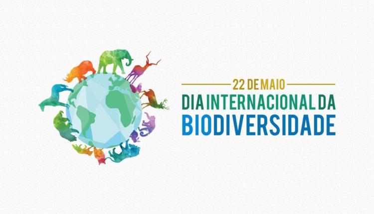 Biodiversidade - 22 de maio é comemorado o Dia Internacional da Biodiversidade