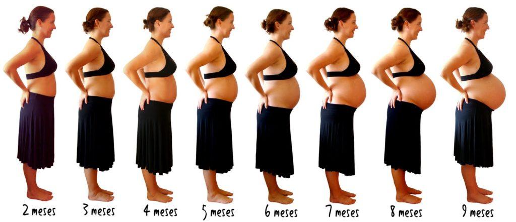 Gravidez - Mudanças no corpo da mulher durante os nove meses