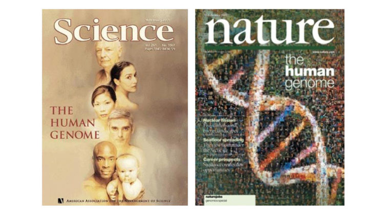 Projeto Genoma Humano - Capas das revistas científicas que publicaram os resultados