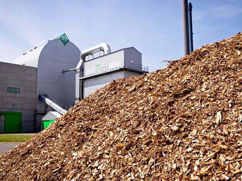 Fontes de energia - Biomassa