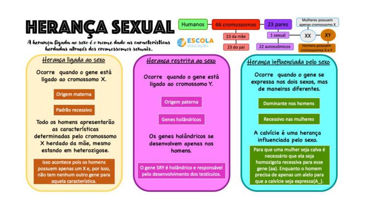 Mapa mental - Herança sexual