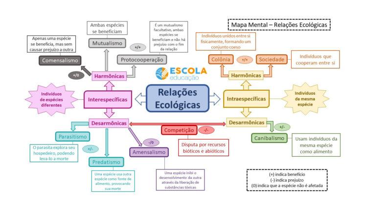 Mapa mental - Relações ecológicas