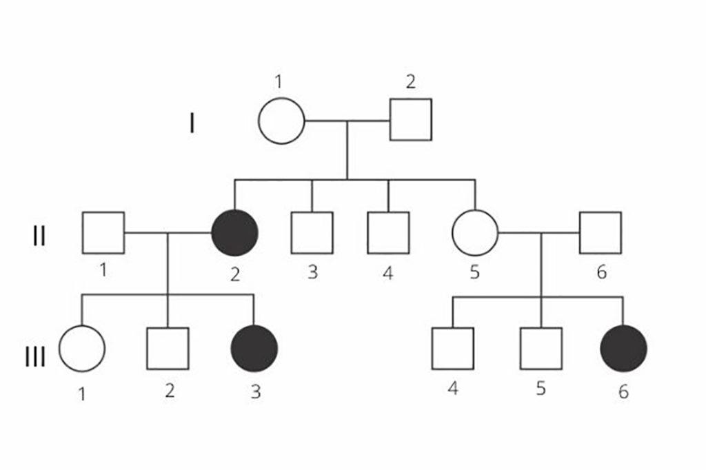 Heredograma - Anomalia genética nos símbolos escuros.