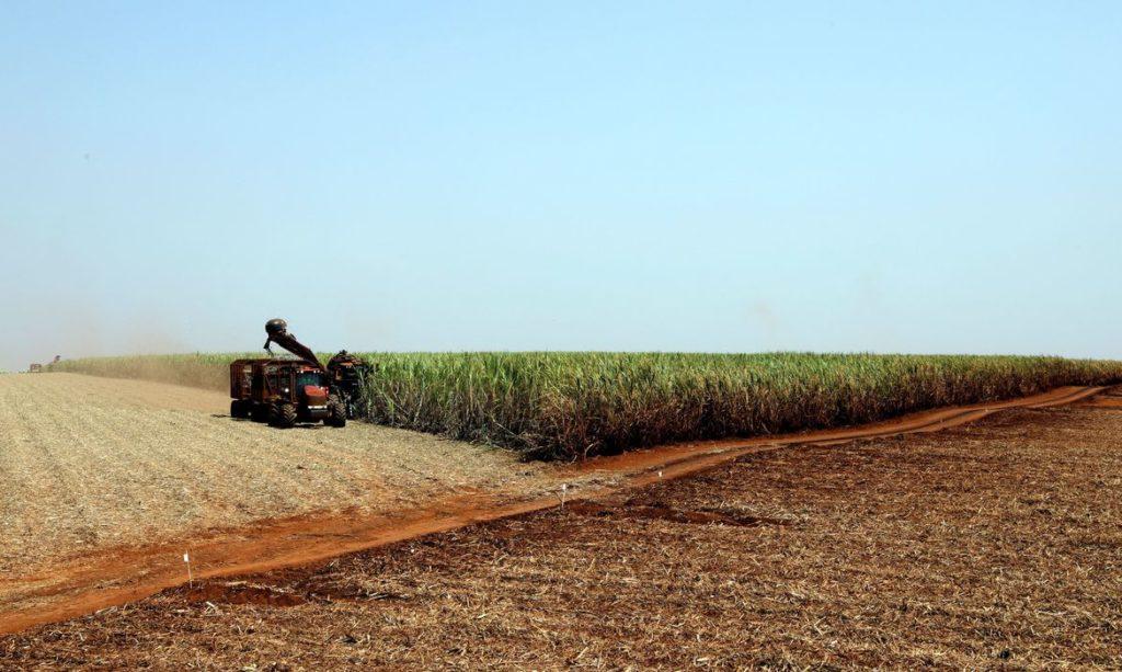 Impactos ambientais causados pela agricultura - Uso de maquinário retira mão-de-obra familiar e polui o ar.